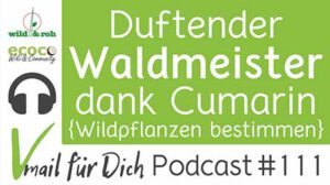 Podcast Vmail 111 Waldmeister