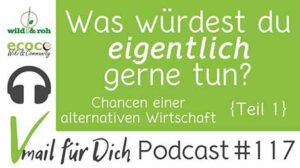 Podcast Vmail 117