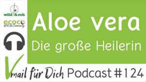 Podcast Vmail 124