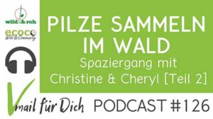 Podcast Vmail 126